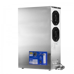 BNP SOZ-YB-6g10g15g20g25g32g industrial water ozone generator air purifier for laundry spa pool pure energy drinking